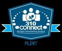 MIBFN 310 Connect Flint logo transparent