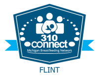 MIBFN 310 Connect Flint logo web